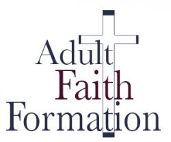 Adult Faith Formation (Bible Study)